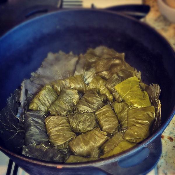 Голубцы из виноградных листьев, начиненные кукурузной кашей со шкварками_3