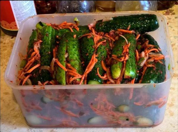 Кимчи из огурцов_Oisobagi kimchi_3.jpg