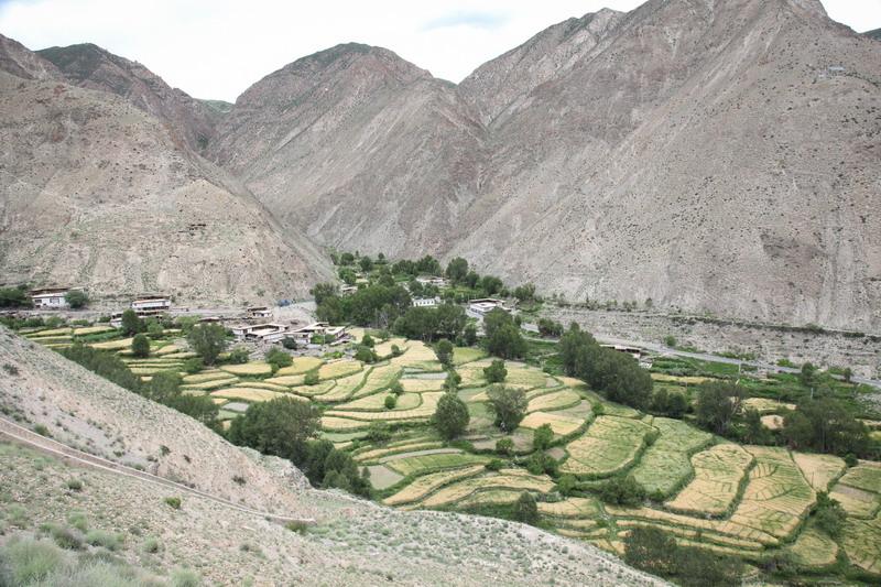 tibet2-023