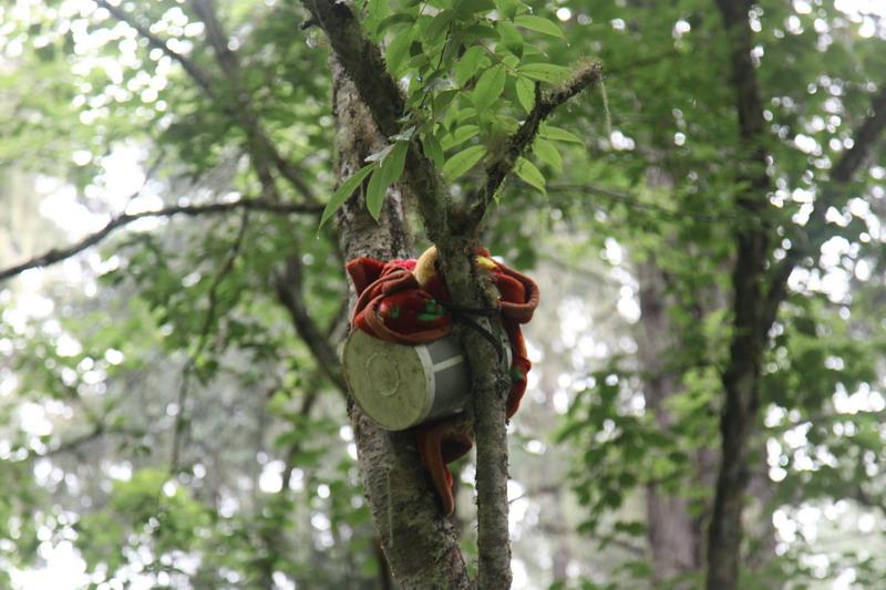 tree-018