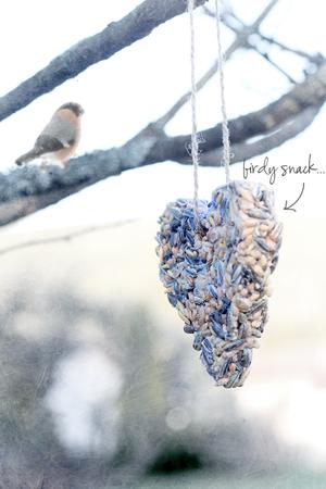 Birdy_snack