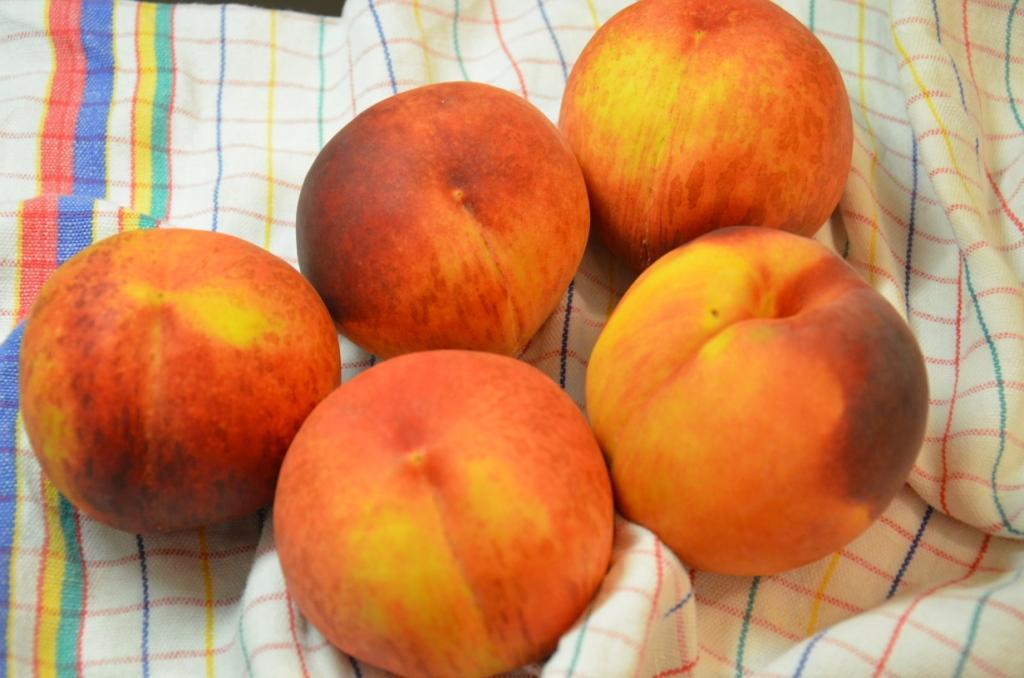 persik 1
