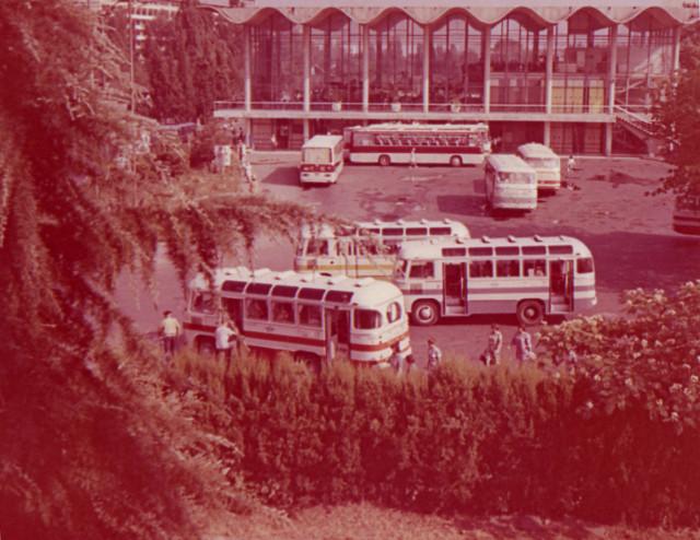Сочинский автовокзал