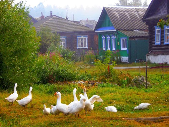 Каникулы в деревне - 2