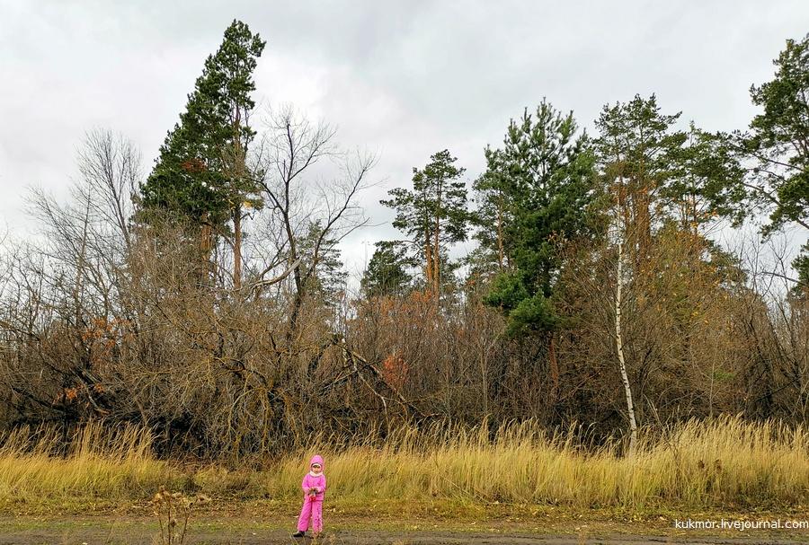 Никольские луга, коттеджный поселок, Лаишевский район, земельные участки ИЖС, фотографии, Аксанов Нияз, Тургай, Сапуголи