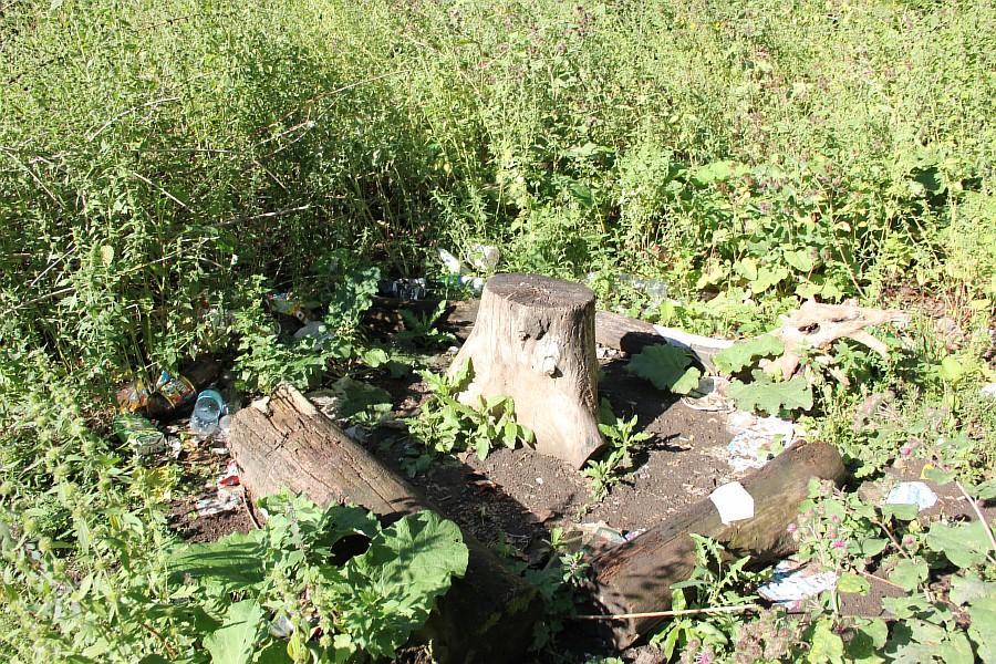 Парк Молодоженов Казань Блогер против мусора 2012 Зеленый парк  08