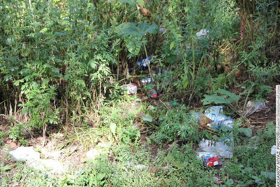 Парк Молодоженов Казань Блогер против мусора 2012 Зеленый парк  12
