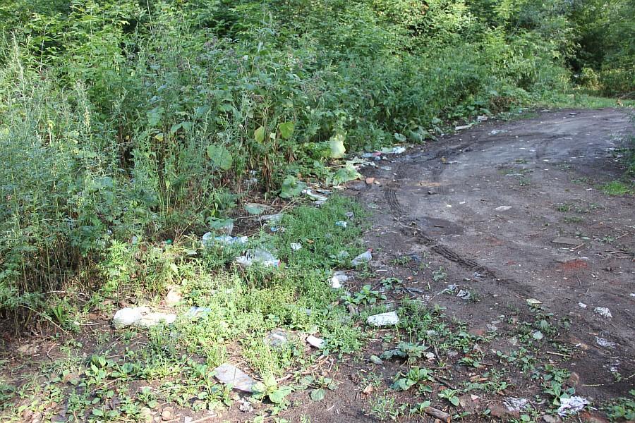 Парк Молодоженов Казань Блогер против мусора 2012 Зеленый парк  13