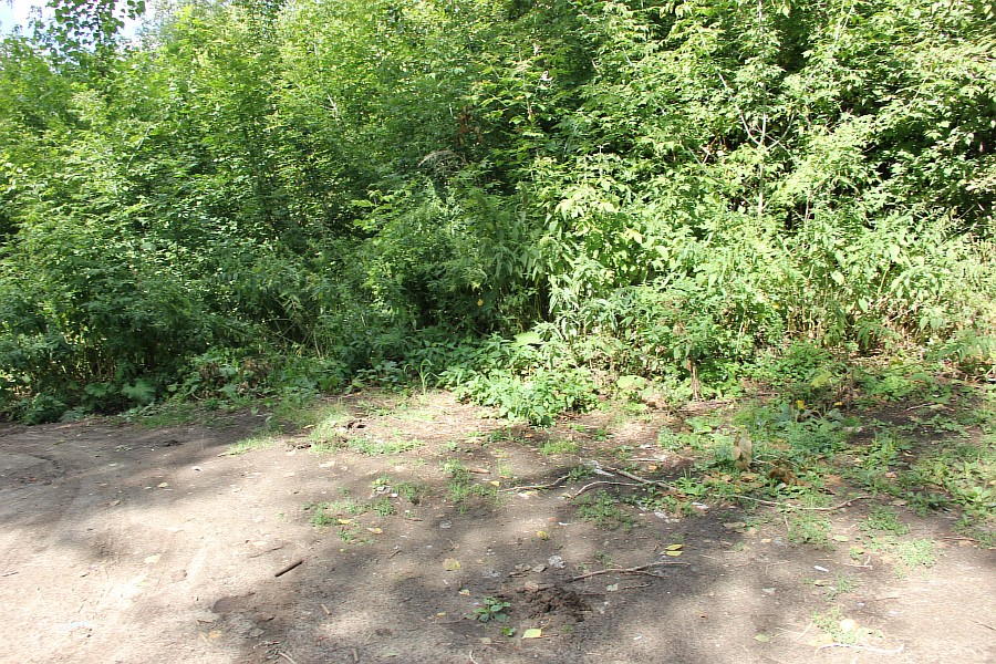 Парк Молодоженов Казань Блогер против мусора 2012 Зеленый парк  17