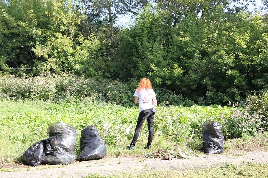Парк Молодоженов Казань Блогер против мусора 2012 Зеленый парк  22