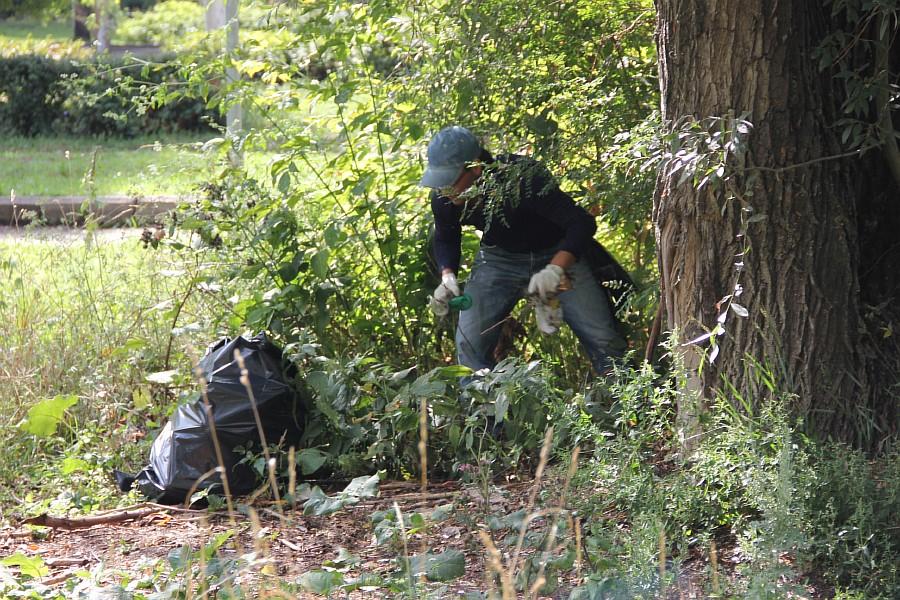 Парк Молодоженов Казань Блогер против мусора 2012 Зеленый парк  24