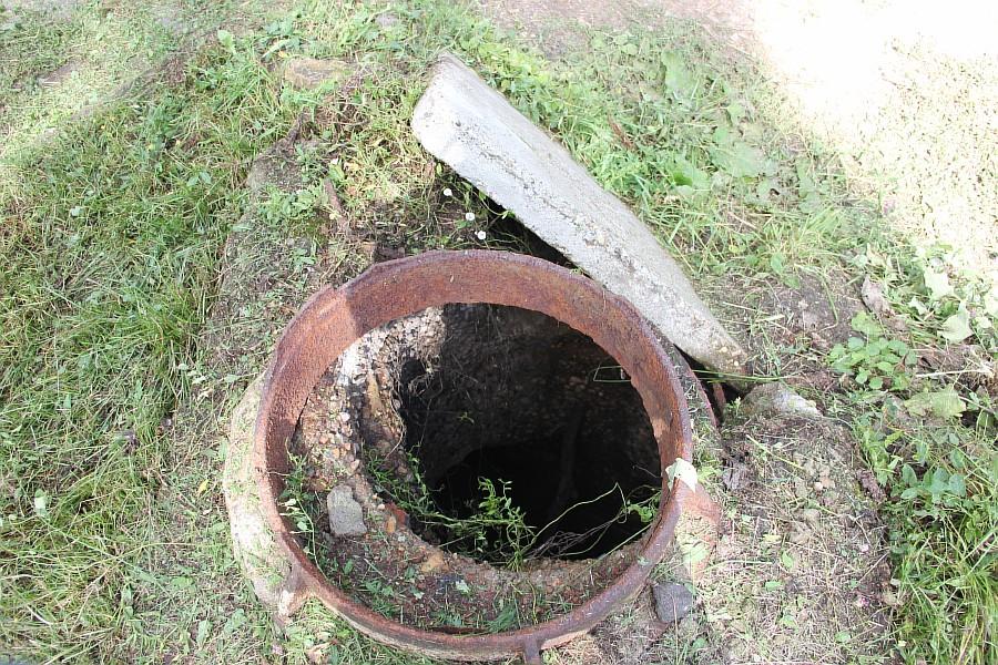 Парк Молодоженов Казань Блогер против мусора 2012 Зеленый парк  30