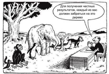 Вся система образования в одном изображении
