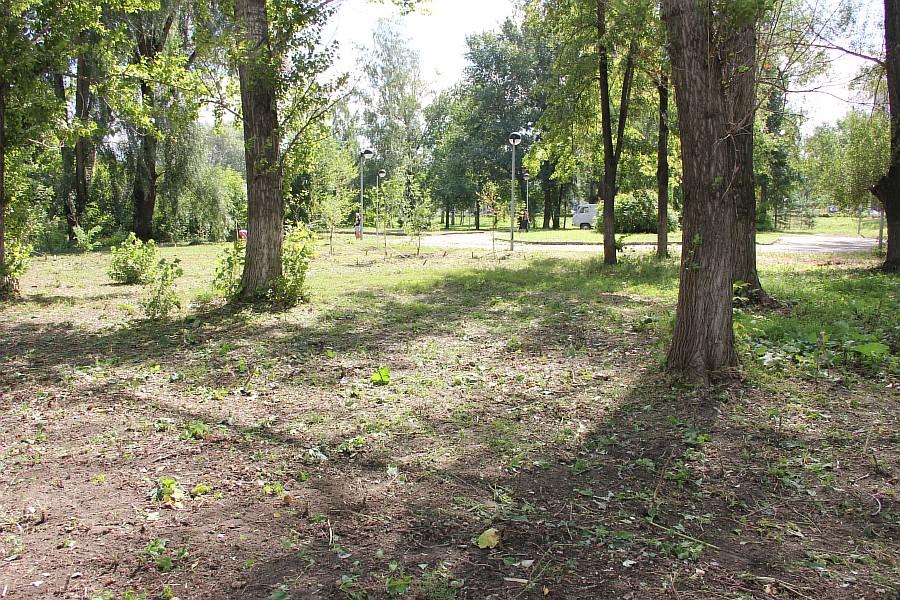 Парк Молодоженов Казань Блогер против мусора 2012 Зеленый парк  36