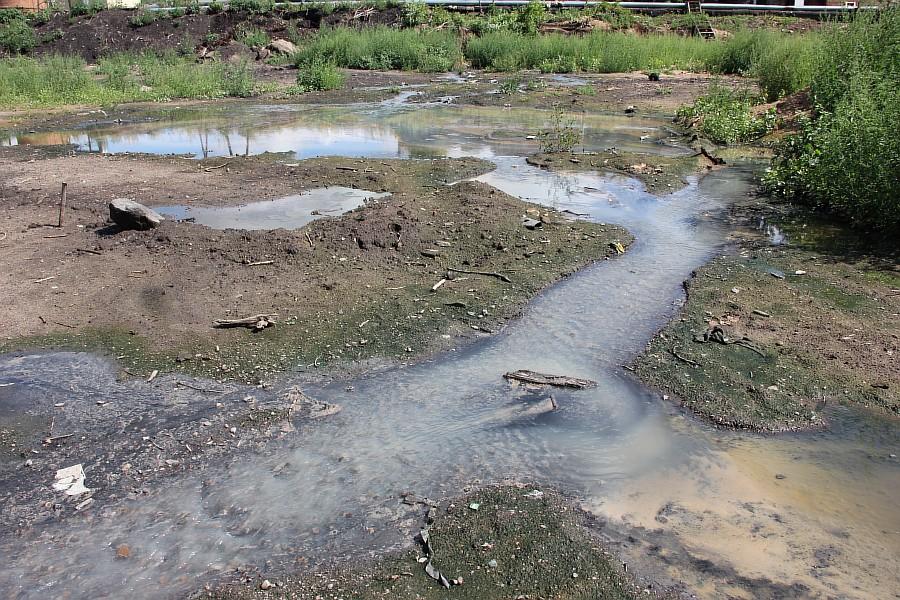 Парк Молодоженов Казань Блогер против мусора 2012 Зеленый парк  47