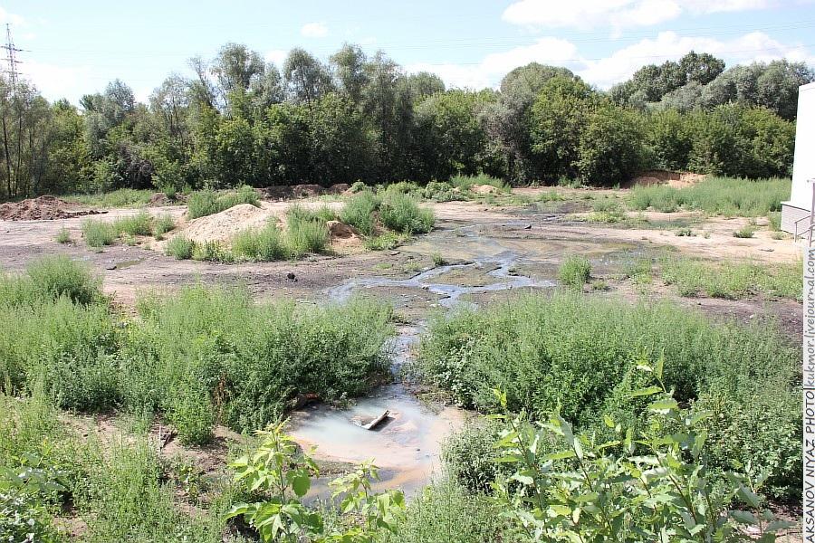 Парк Молодоженов Казань Блогер против мусора 2012 Зеленый парк  50
