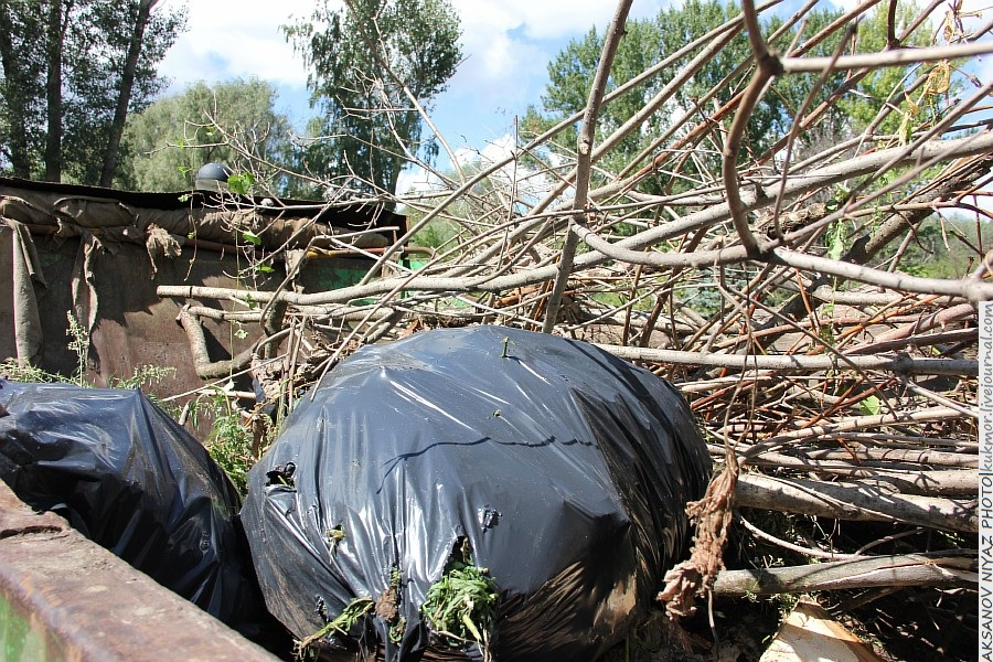 Парк Молодоженов Казань Блогер против мусора 2012 Зеленый парк  56