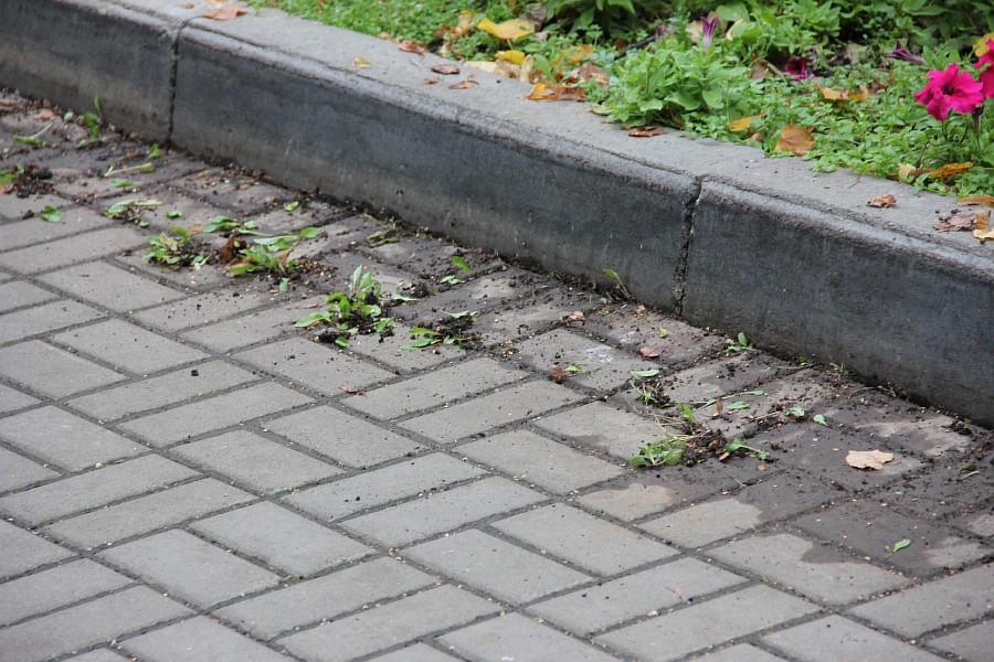 25 августа 2012 субботник в Казани 004