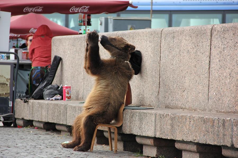 фотография, kukmor, аксанов нияз, gorod22, sbp, Питер, Санкт-Петербург, IMG_9076