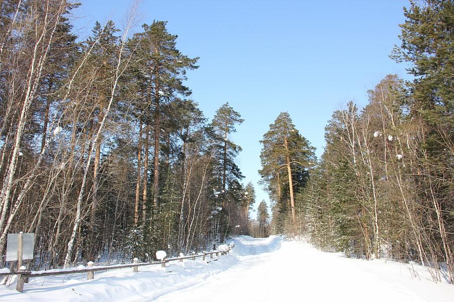 Путешествие на север, ханты, стойбище, блогеры, сургут, жж, Аксанов Нияз, kukmor, фотография, путешествия  of IMG_4511