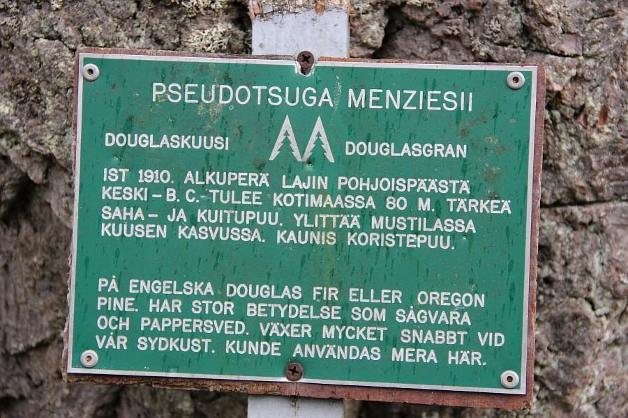 Дендрарий, Arboretum Mustila, Арборетум Мустила, Коувола, фотография, путешествия, финляндия, Аксанов Нияз, kukmor, of IMG_8309