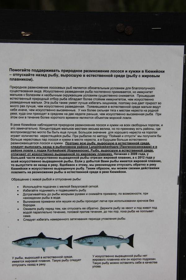 Царская дача, Лангинкоски, Langinkoski, путешествия, фотография, Аксанов Нияз, kukmor, финляндия, император,  of IMG_0397