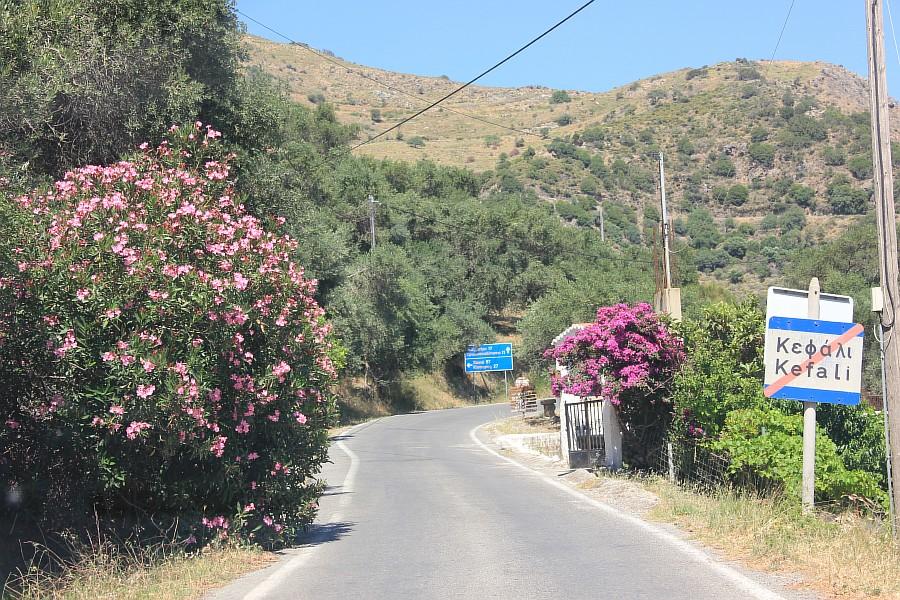 Цветы, Крит, фотография, Аксанов Нияз, путешествия, Греция, красота, kukmor, of IMG_9778