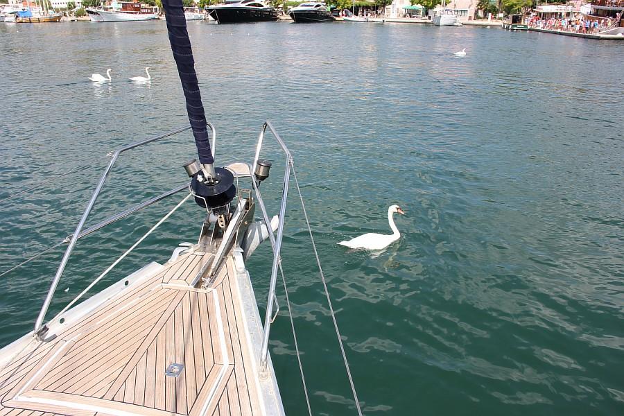 путешествия, фотография, Хорватия, яхта, Аксанов Нияз, море  of IMG_3240
