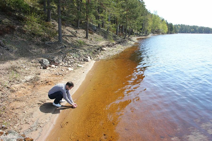 Finland, lj, путешествия, Финляндия, фотография, Аксанов Нияз, kukmor, жж, природа, животные, еда, озеро, море, лес, блогеры,  of IMG_6950