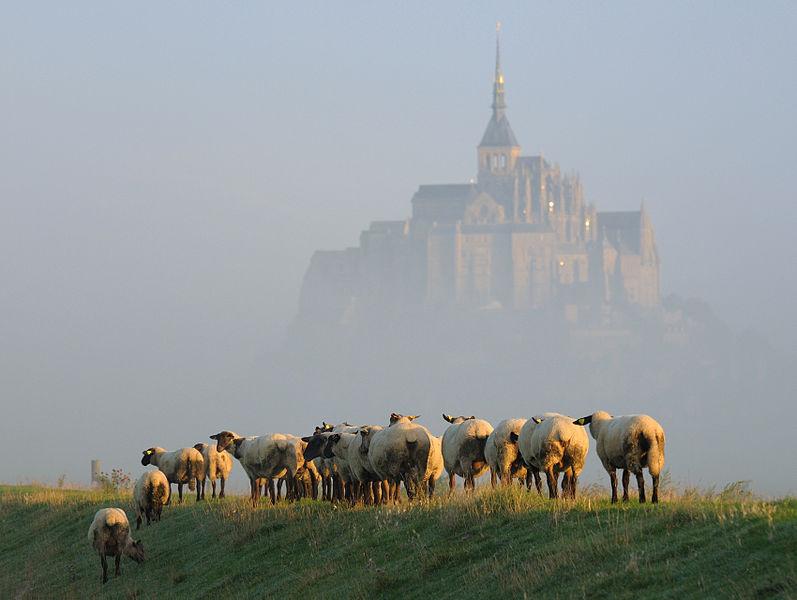 Мон-сен-мишель, Mont Saint Michel, путешествия, фотография, Аксанов Нияз, kukmor, lj, жж, Франция, Нормандия, остров, история, of IMG_6900