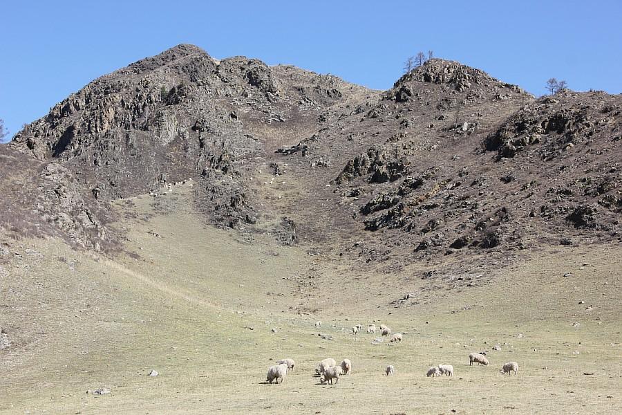 Алтай, горы, путешествия, природа, красота, Чуя, Катунь, Аксанов Нияз, kukmor, жж, of IMG_2623