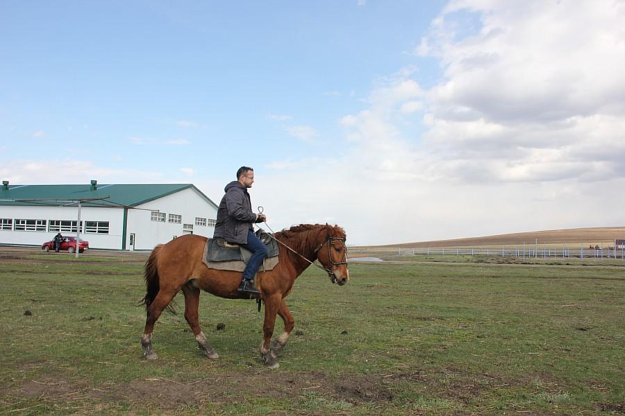 Алтай, лошади, рафтинг, озеро, путешествия, фотография, kukmor, Аксанов Нияз,жж, of IMG_3650