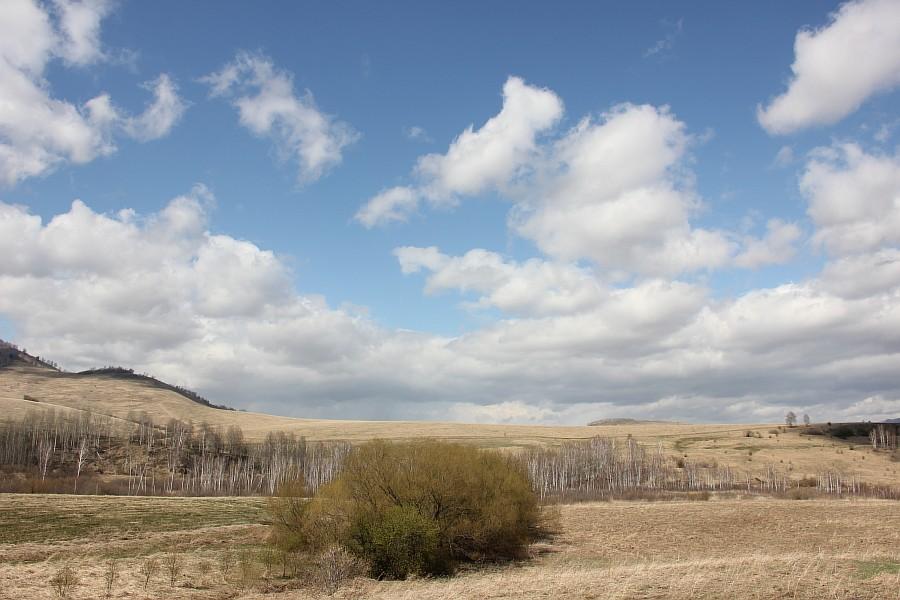 Алтайский край, Алтай, путешествия, отдых, фотография, Аксанов Нияз, kukmor, жж, лошадь, облака, of IMG_3134