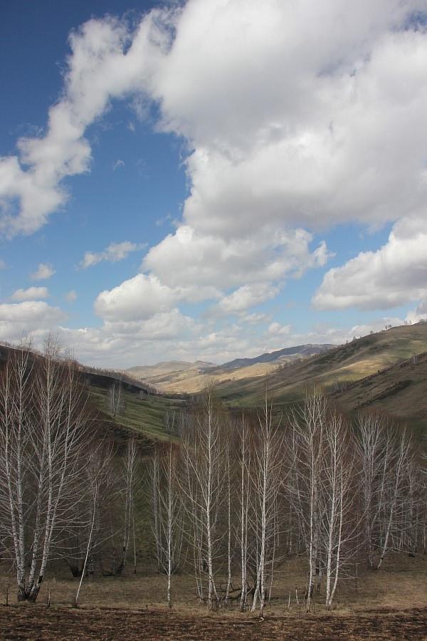 Алтайский край, Алтай, путешествия, отдых, фотография, Аксанов Нияз, kukmor, жж, лошадь, облака, of IMG_3143