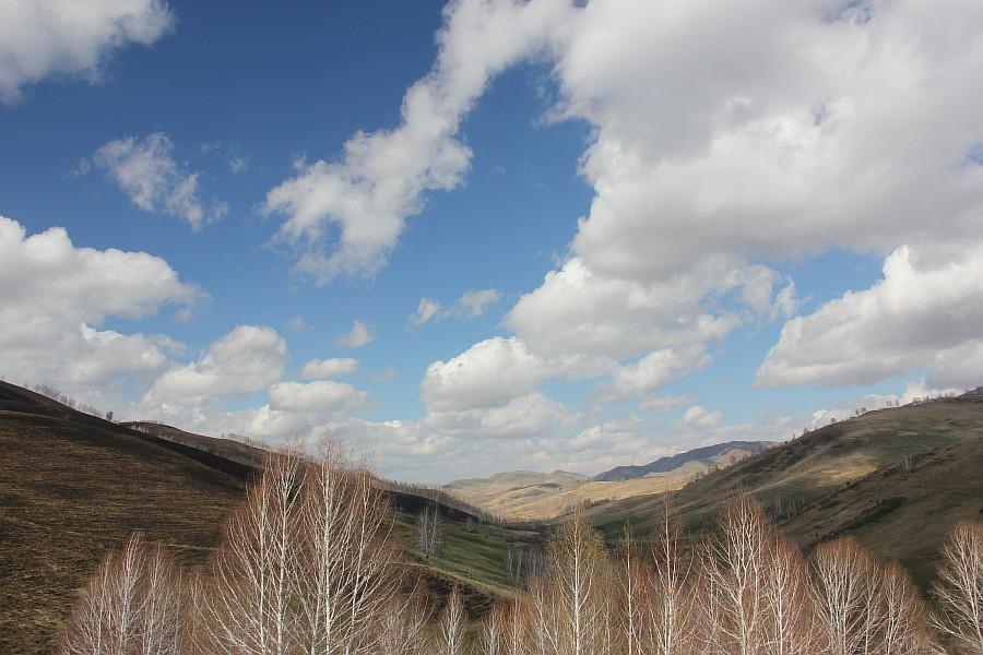 Алтайский край, Алтай, путешествия, отдых, фотография, Аксанов Нияз, kukmor, жж, лошадь, облака, of IMG_3149