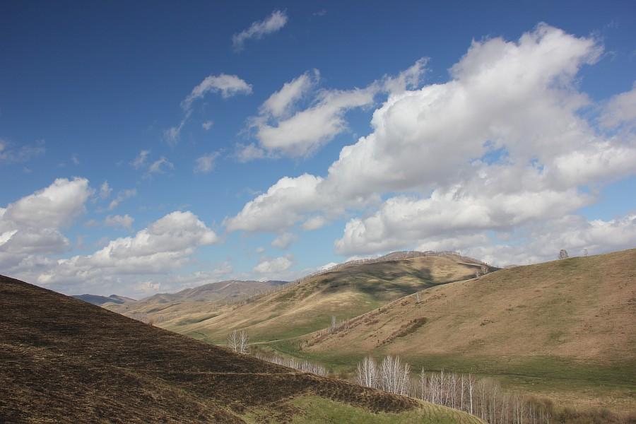 Алтайский край, Алтай, путешествия, отдых, фотография, Аксанов Нияз, kukmor, жж, лошадь, облака, of IMG_3160