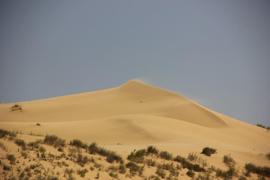Сарыкумские барханы, Дагестан, фотография, Аксанов Нияз, kukmor, 100скфо, 100skfo, пустыня, барханы, жж, блогтур, of IMG_1229
