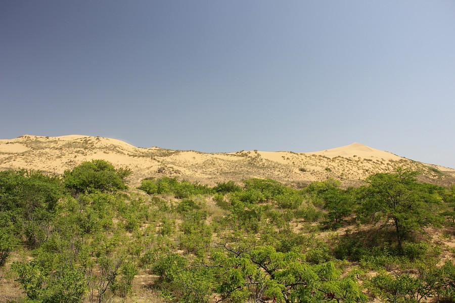 Сарыкумские барханы, Дагестан, фотография, Аксанов Нияз, kukmor, 100скфо, 100skfo, пустыня, барханы, жж, блогтур, of IMG_4198