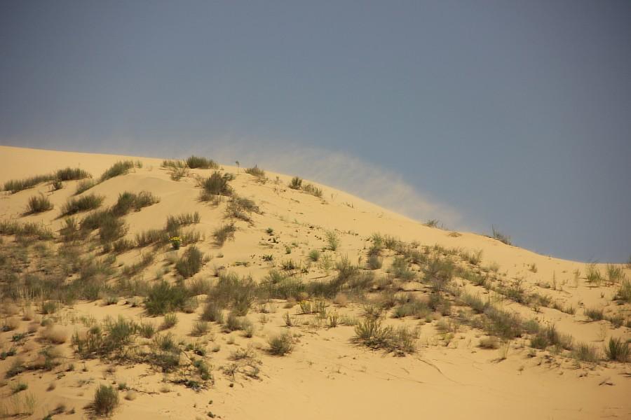 Сарыкумские барханы, Дагестан, фотография, Аксанов Нияз, kukmor, 100скфо, 100skfo, пустыня, барханы, жж, блогтур, of IMG_4216
