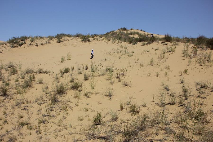 Сарыкумские барханы, Дагестан, фотография, Аксанов Нияз, kukmor, 100скфо, 100skfo, пустыня, барханы, жж, блогтур, of IMG_4329