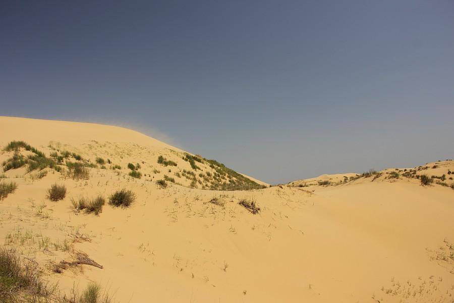 Сарыкумские барханы, Дагестан, фотография, Аксанов Нияз, kukmor, 100скфо, 100skfo, пустыня, барханы, жж, блогтур, of IMG_4421