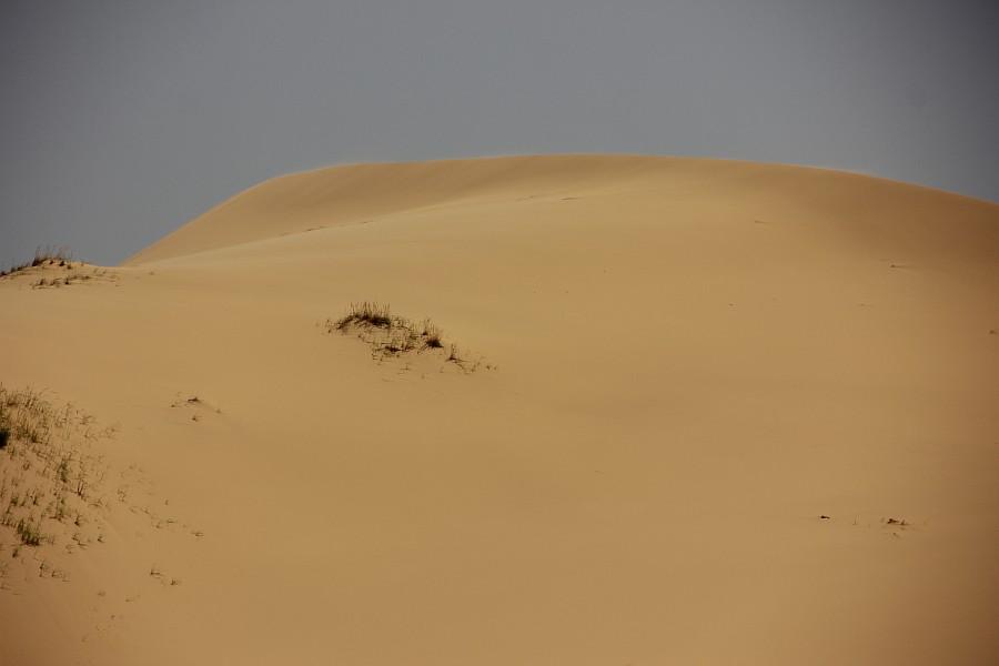 Сарыкумские барханы, Дагестан, фотография, Аксанов Нияз, kukmor, 100скфо, 100skfo, пустыня, барханы, жж, блогтур, of IMG_4426