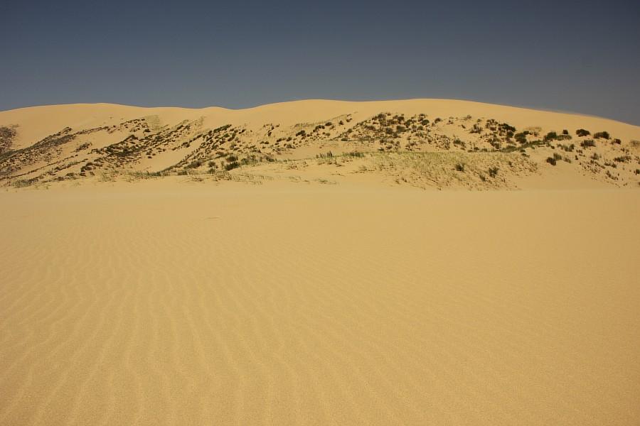 Сарыкумские барханы, Дагестан, фотография, Аксанов Нияз, kukmor, 100скфо, 100skfo, пустыня, барханы, жж, блогтур, of IMG_4533