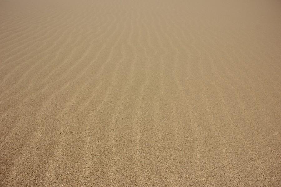 Сарыкумские барханы, Дагестан, фотография, Аксанов Нияз, kukmor, 100скфо, 100skfo, пустыня, барханы, жж, блогтур, of IMG_4560