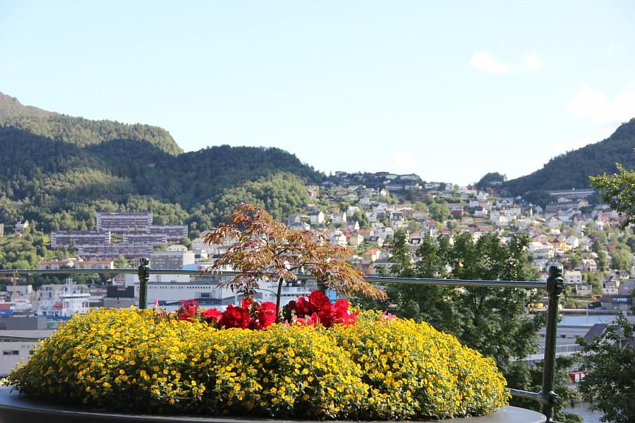 Bergen, Берген, norway, Норвегия, фотография, Аксанов Нияз, путешествия, kukmor, livejournal, блогтур, of IMG_6452