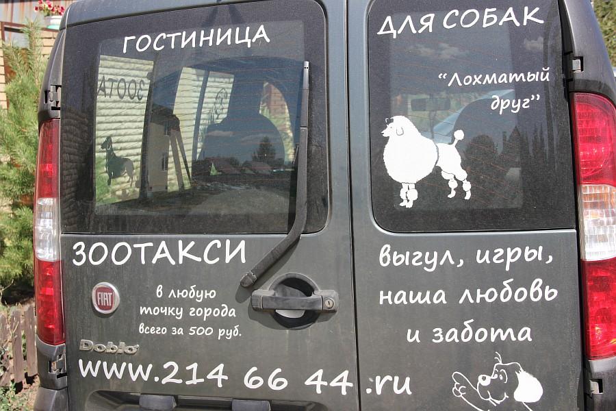 Казань, Фермопарк Хуторок, животные, ферма, фотографии, Аксанов Нияз, kukmor, экскурсии, дети, развлечение, пони, природа, жж, of IMG_1050