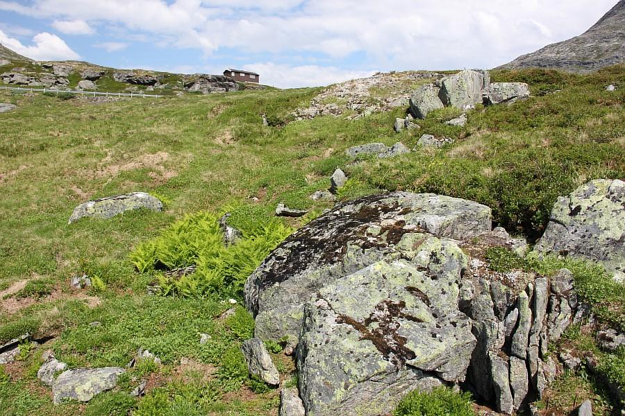Норвегия, природа, путешествия, фотография, Аксанов Нияз, kukmor, жж, of IMG_8385