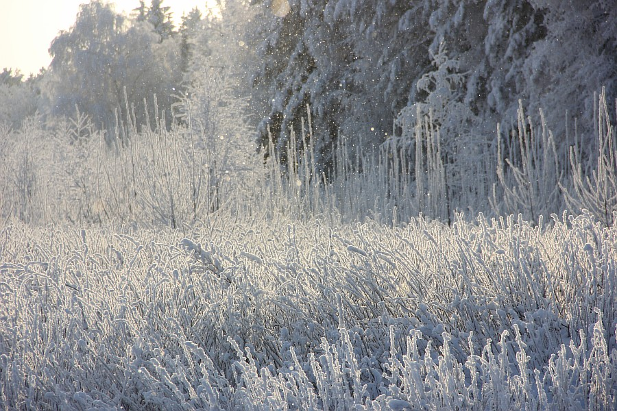 Кукмор, зима, Россия, фотографии, Аксанов Нияз, kukmor,  of IMG_0038