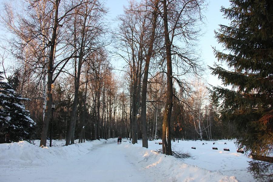 Лыжи, Казань, Парк Горького, зима, nordway, Аксанов Нияз, фото,  of IMG_4783