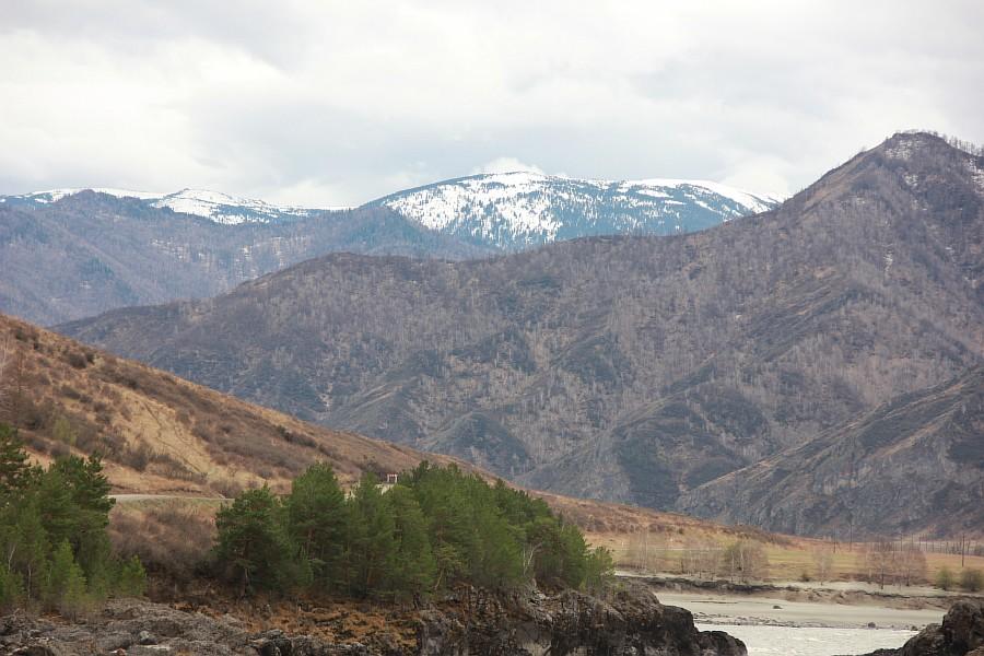 Алтай, Катунь, Ороктой, пороги, путешествия, фотографии, Аксанов Нияз, kukmor, природа, Россия, река, мост, of IMG_2451